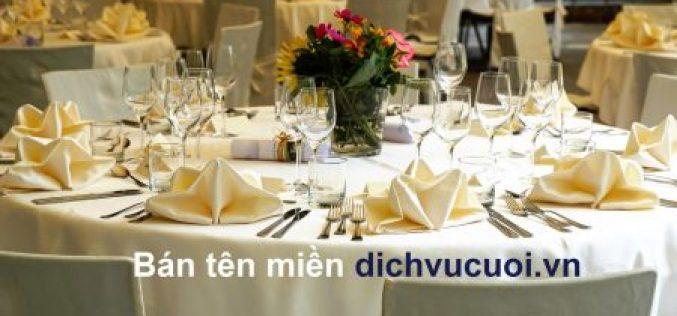 Tên miền dịch vụ cưới (dichvucuoi.vn)