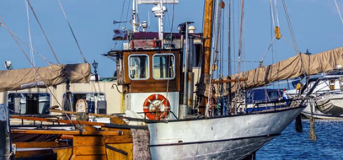 Thủ tục xin cấp phép cho tàu cá khai thác thủy sản ngoài vùng biển Việt Nam