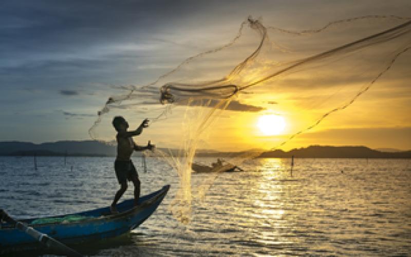 Quy định về vùng khai thác thủy sản